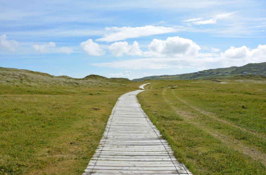 Imagen de un camino del que no se ve el final