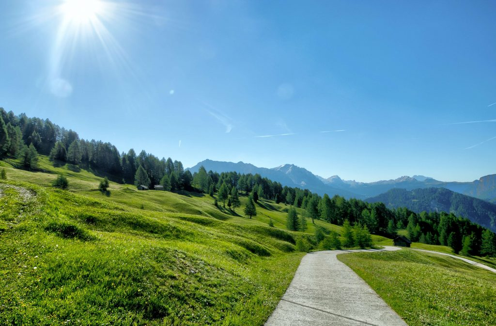 Imagen de un camino soleado en medio de la naturaleza