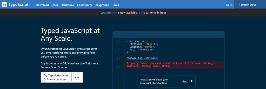 Home de la web de TypeScript